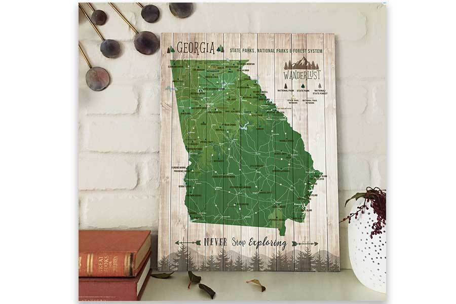 Georgia State, State Park Map, Canvas, Ready to Hang Map World Vibe Studio