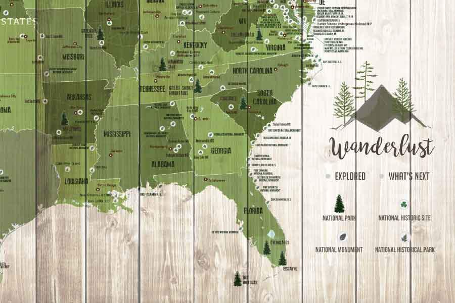 Forest System Map and US National Parks, Push Pin Canvas Board Map World Vibe Studio