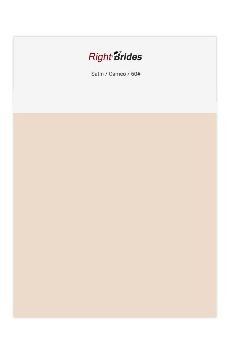 Cameo Color Swatches for Satin Bridesmaid Dresses