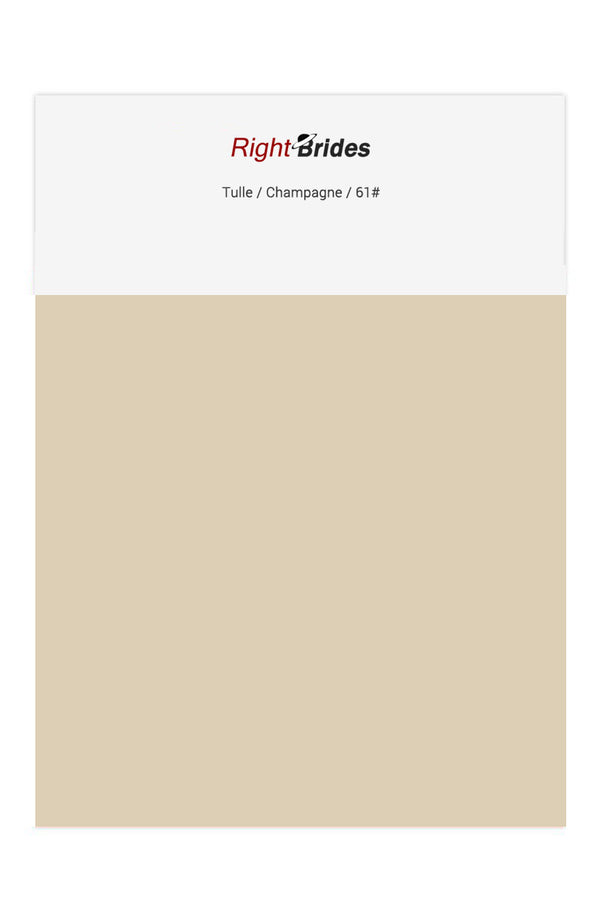 Champagne Color Swatches for Tulle Bridesmaid Dresses