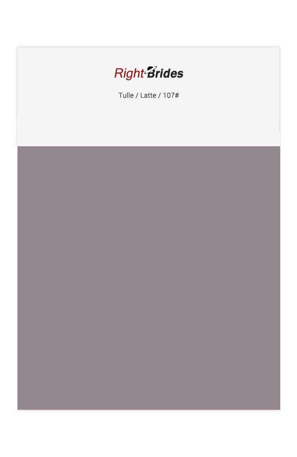 Latte Color Swatches for Tulle Bridesmaid Dresses