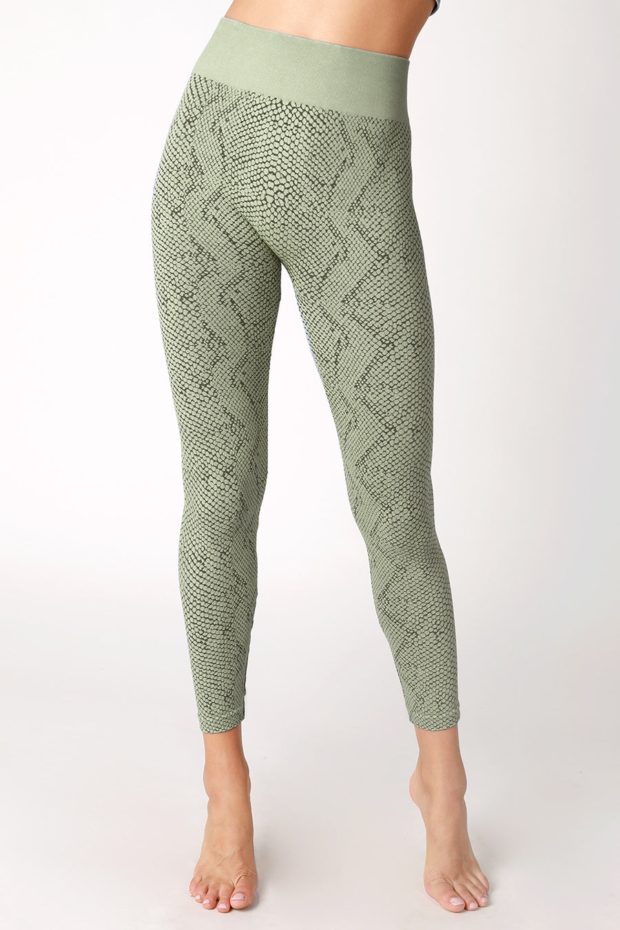 SNAKE SKIN LEGGINGS - Penny Lane Boutique