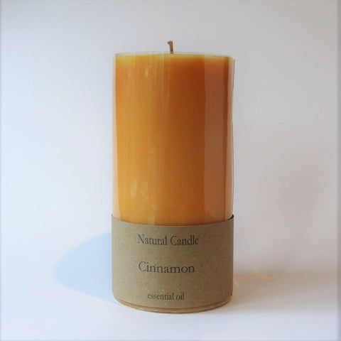 Eco friendly natural plant based wax candle Cinammon