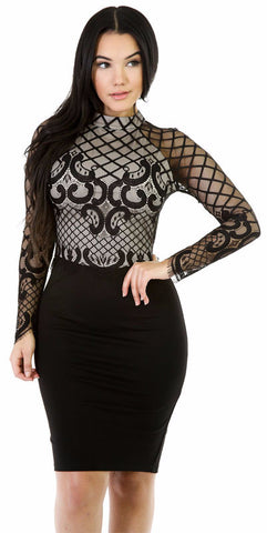 Sheer Glam Bodycon Dress
