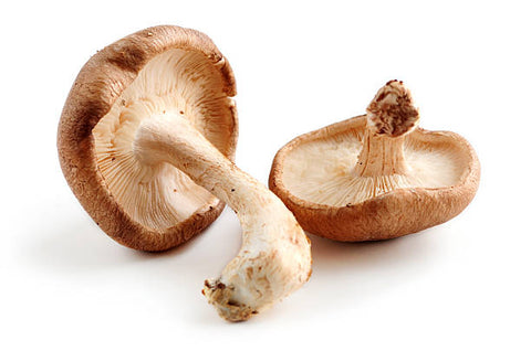 Shitake Mushrooms (8 oz)