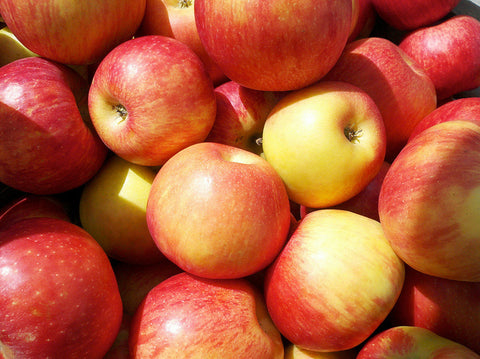 Apples, HoneyCrisp - 1 bushel, Yonder Farms