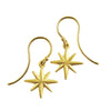 <!--ER536-->twinkle earrings