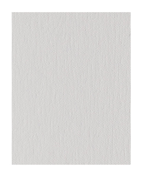 56MC Medium Cotton Canvas Panel Raymar Texture