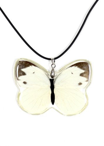 White Butterfly Pendant Necklace Faux Leather NN37 Fashion Jewelry