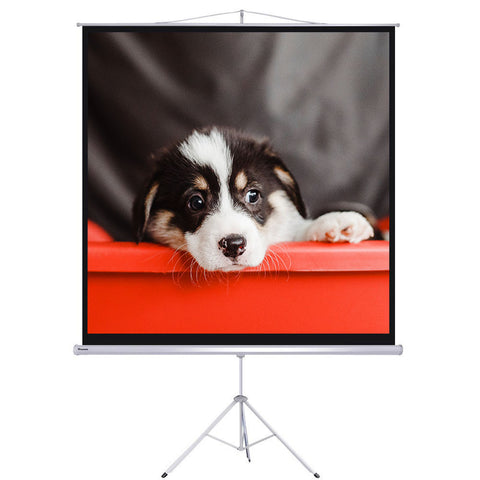 "100"" Projector Screen with Stand"