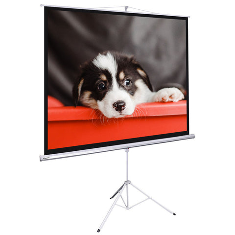 "Image of 100"" Projector Screen with Stand"