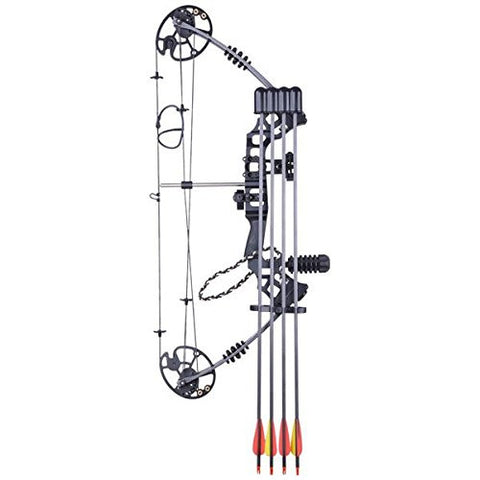 Image of Archery Bow with 12 Carbon Arrows