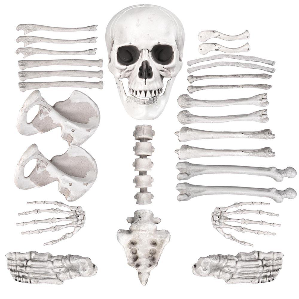 Bag of Bones (28pc)