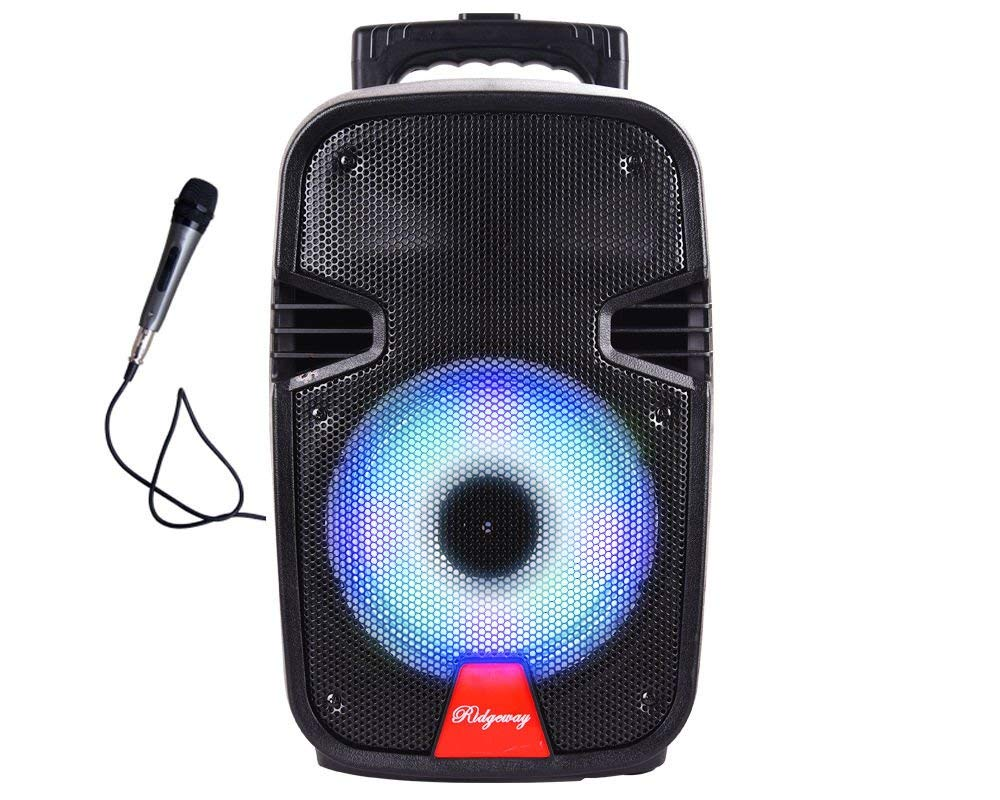 Portable Bluetooth Pa Karaoke Speaker Battery Powered USB SD FM Aux 8in Woofer