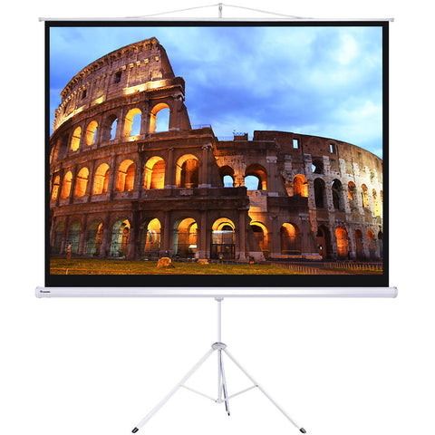 "Image of 120"" Projector Screen with Stand"