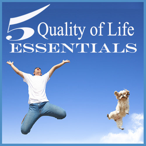 5 Quality of Life Essentials For You & Your Dog