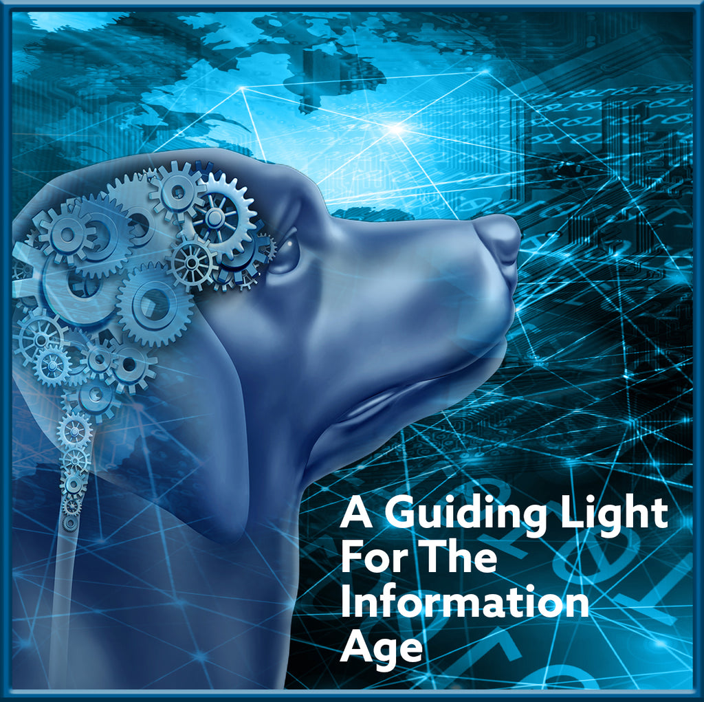 A Guiding Light For The Age of Information