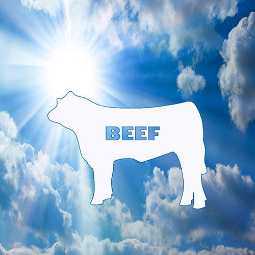 Beefs about Beef ∙ What's used in your dog food?