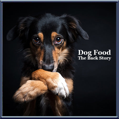 Dog Food: The Back Story of Ingredients