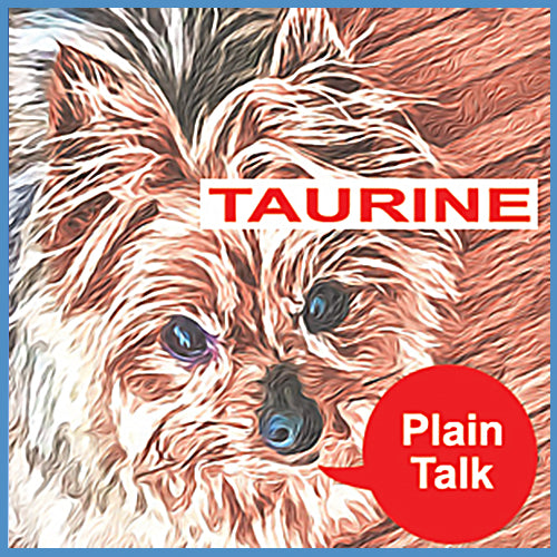 Taurine and The Danger of Grain Free Foods