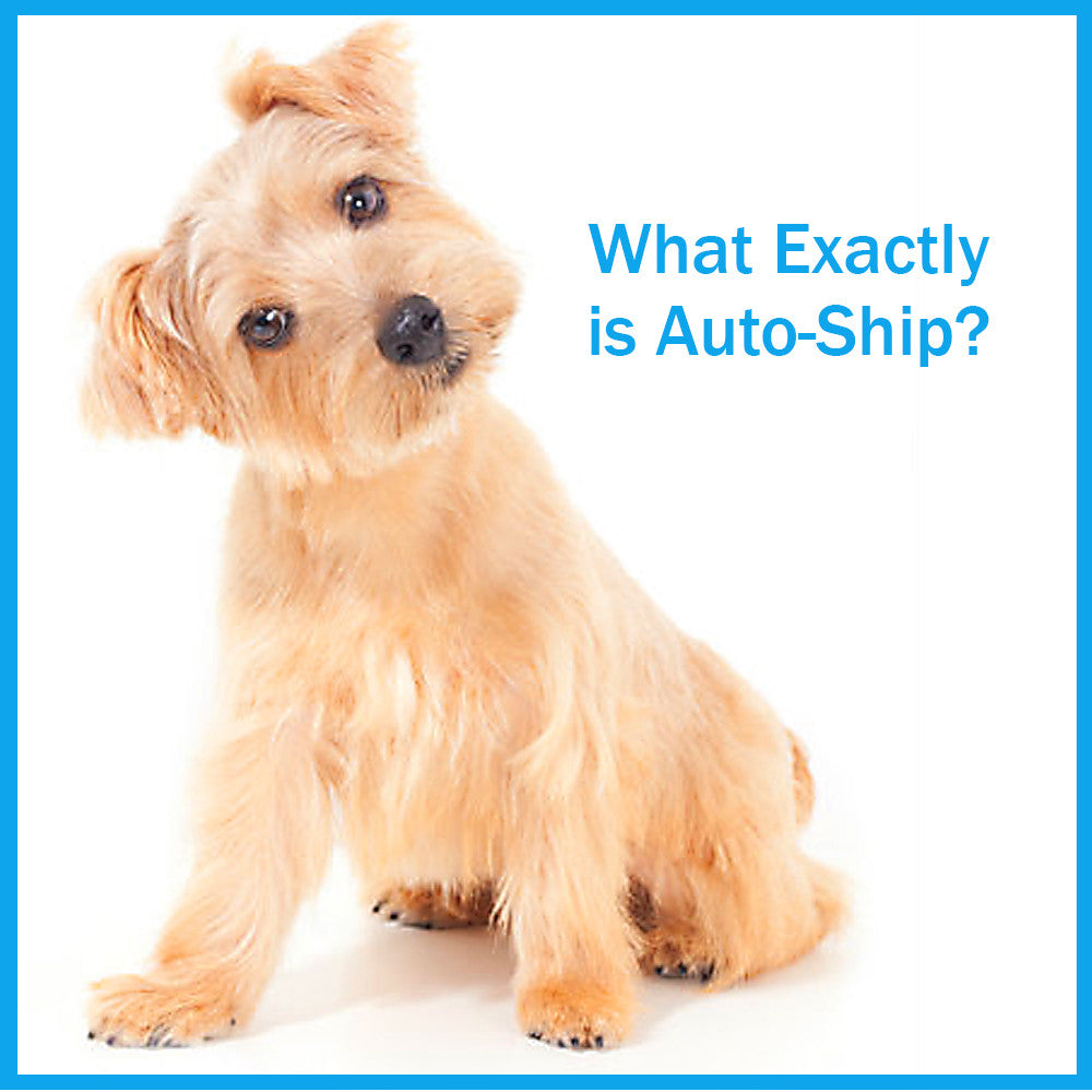 Auto-Ship Savings and Convenience with Dogs For The Earth