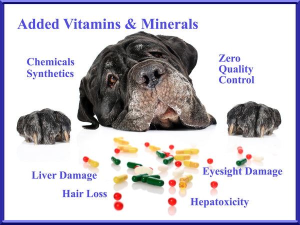 added vitamins are synthetic chemicals toxic for dogs - added vitamins are synthetic chemicals unsafe for dogs