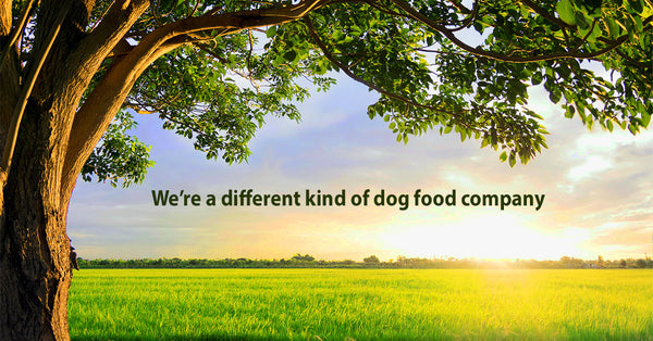 dogs for the earth - organic dehydrated dog food