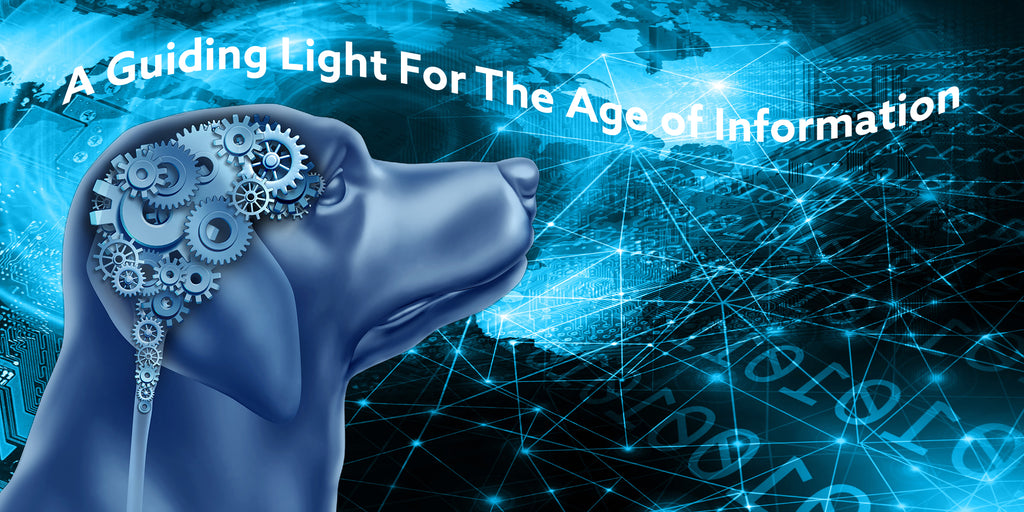 a guiding light for the information age