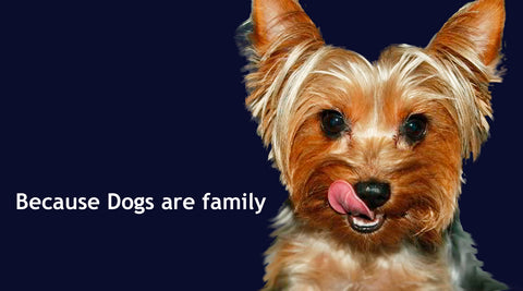 dogs are family dogs for the earth organic dog food