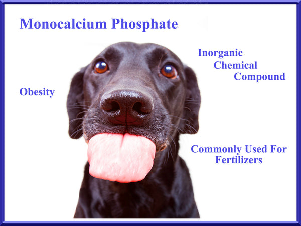 monocalcium phosphate is toxic for dogs - monocalcium phosphate is unsafe for dogs