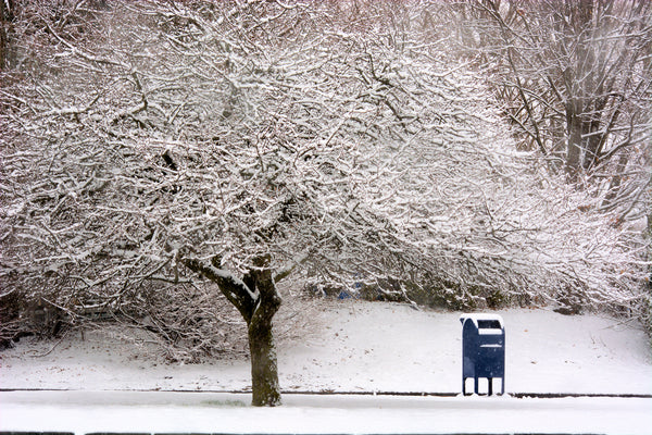 snow and mailbox