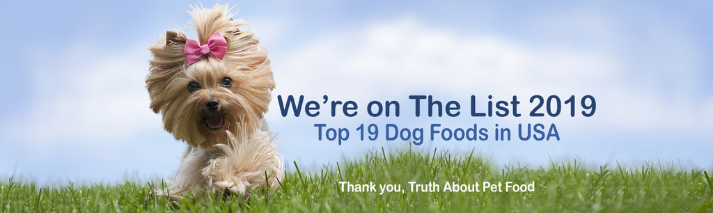 the list 2019 best dog food usa