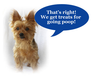 Treat your dog for going poop