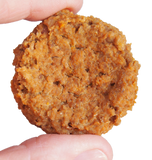 Chicken and Pumpkin Organic Dehydrated Dog Treats by Dogs For The Earth - view of biscuit in hand