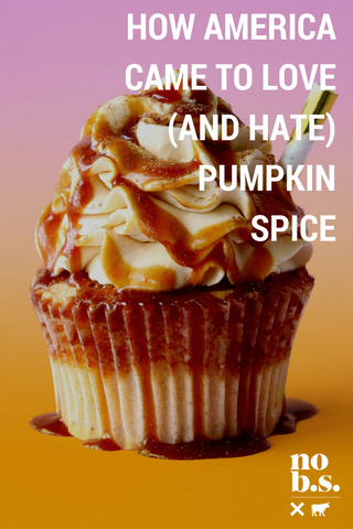 Why We are so obsessed with Pumpkin Spice - Live No B.S.