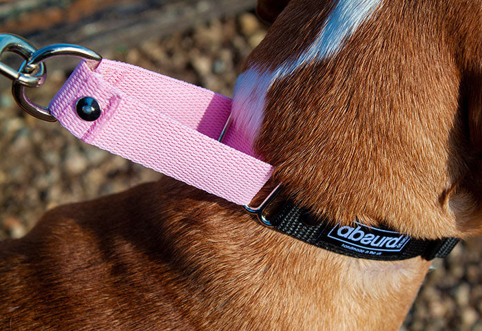 Martingale Collar How to guide Absurd Design
