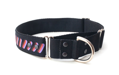 dog training collar showing large loop and D ring on small loop