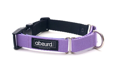 Violet martingale dog collar