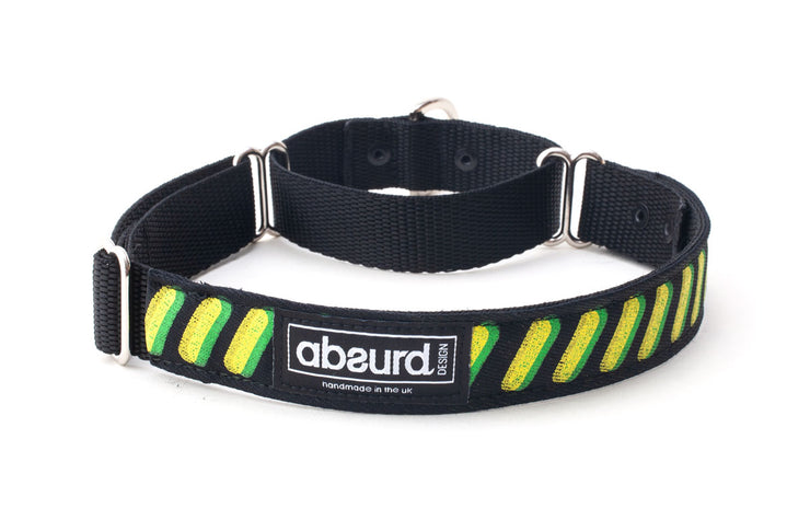 unique and colourful yellow and green on martingale collar
