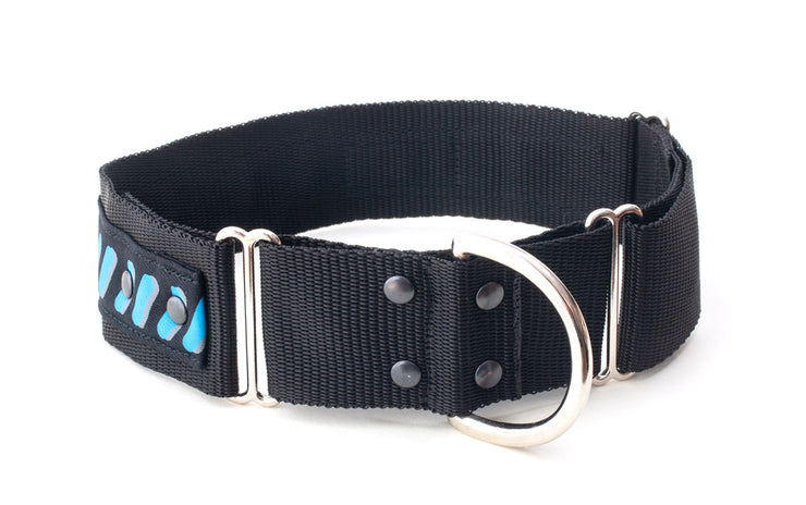 training dog collar showing D ring on small loop