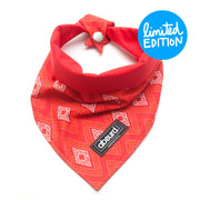 Fun Dog Bandana: Bunji