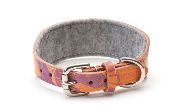Leather hound collar showing buckle and felt lining