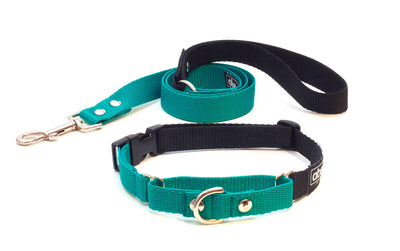 Emerald green buckle martingale dog collar and lead set