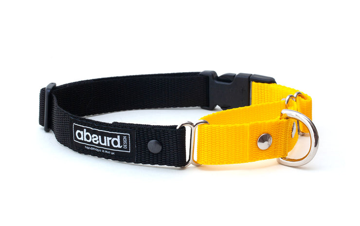 yellow and black martingale collar showing D ring on small loop