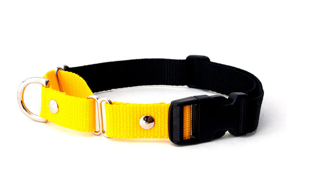 yellow and black martingale collar with quick release buckle