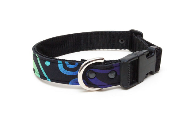 Neoprene dog collar : Rainbow