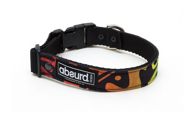 neoprene dog collar with funky rainbow design