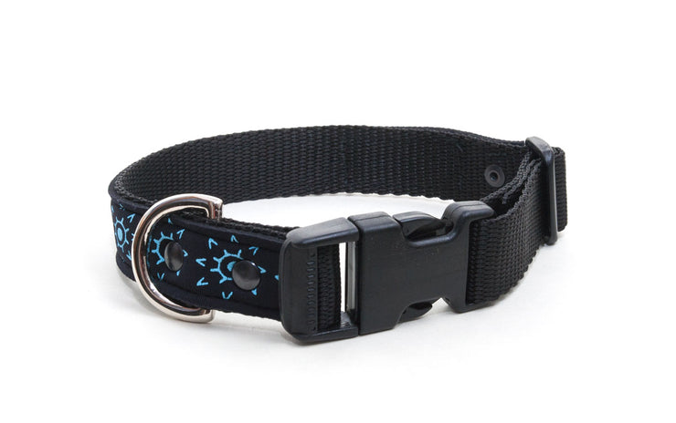 upcycled wetsuit dog collar, comfortable, with buckle