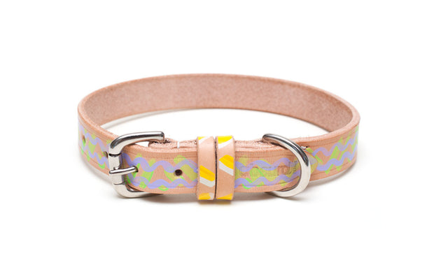 Mojito Painted Leather Dog Collar with buckle and D ring