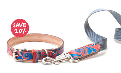 Britannia red and blue leather collar + webbing lead with leather detail
